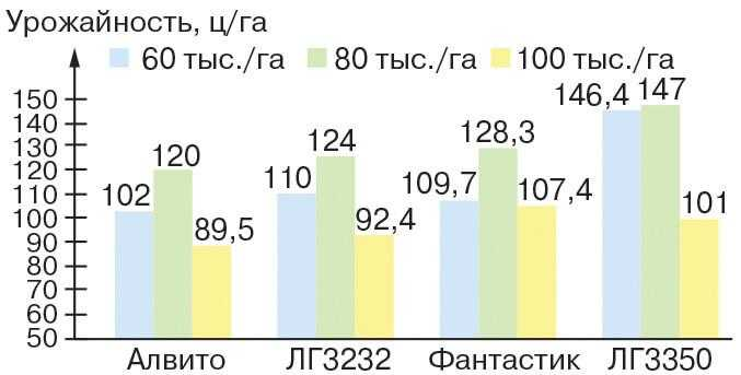 Урожайность различных гибридов кукурузы в зависимости от густоты стояния перед уборкой фото
