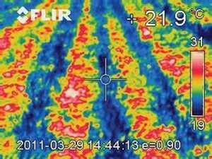 Температура ґрунту при Strip-Till: знімки тепловізорної камери