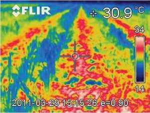Температура ґрунту при Strip-Till (міжряддя): знімки тепловізорної камери