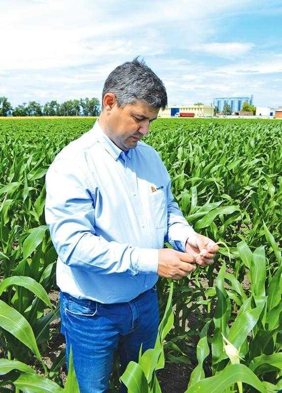 Насінництво кукурудзи залишається для господарства пріоритетним напрямком виробництва