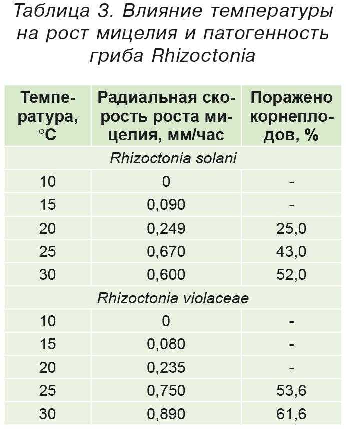 Таблица 3. Влияние температуры на рост мицелия и патогенность гриба Rhizoctonia