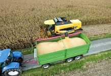 Ориентировочное время хранения зерна кукурузы в зависимости от содержания в нем влаги и температуры