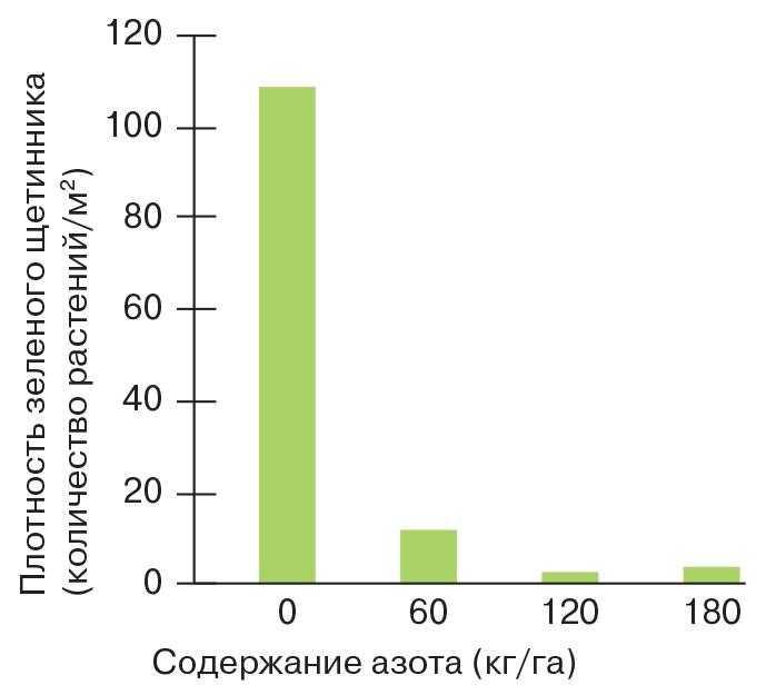 Рис. 1. Распределение питательных элементов влияет на плотность расселения зеленого щетинника