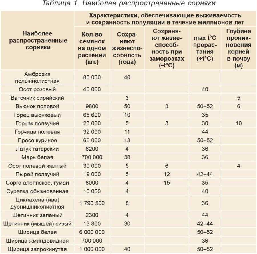Таблица 1. Наиболее распространенные сорняки