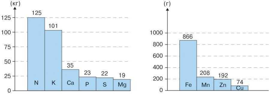 Рис. 2. Вынос из почвы элементов питания соей при урожайности 2,5 т/га