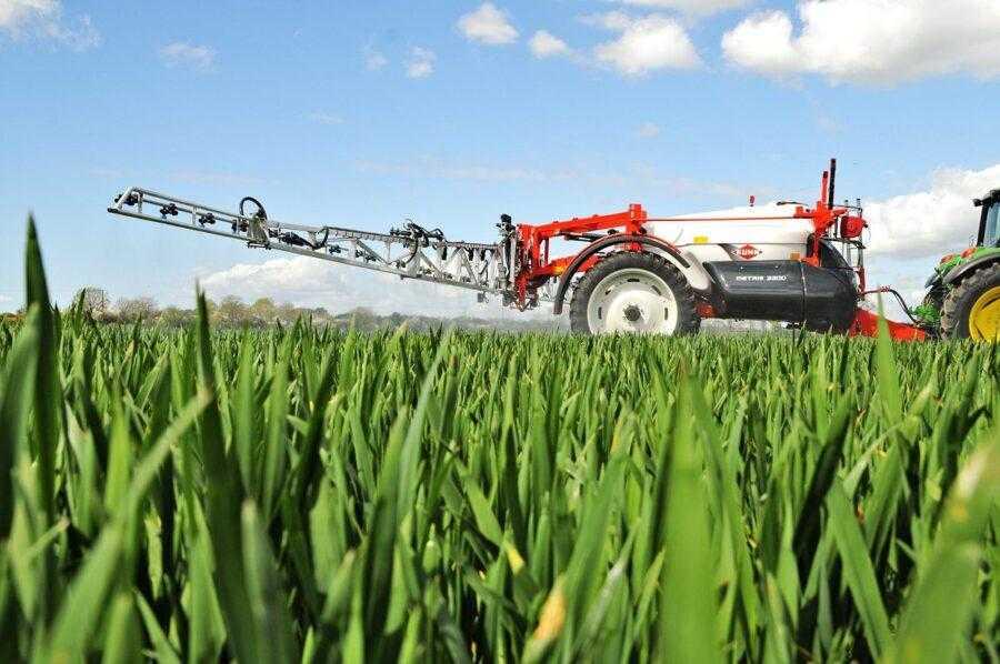 Азотним добривом №1 для зернових колосових культур з точки зору фізіології та агрохімії живлення є КАСи