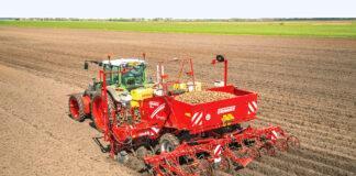 Cадивний матеріал картоплі – підготовка до весни