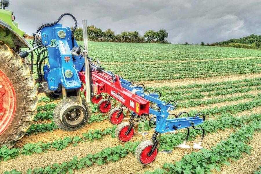 Современная система механического уничтожения сорняков позволяет не только экономить средства на закупке гербицидов, но и накопить значительное количество влаги в почве. На фото – междурядный культиватор с оптическими сенсорами Hatzenbichler проводит обработку посевов рапса