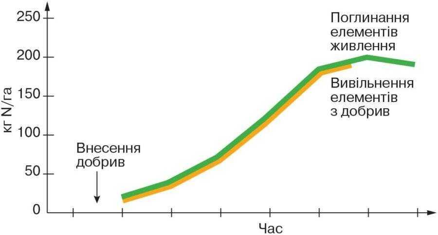 Рис. 1. «Ідеальне» добриво: вивільнення елементів живлення синхронізоване з потребами культури (адаптовано за Lammel, 2005/IFA)