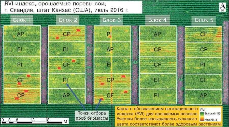 Аэроснимок, демонстрирующий различия в значениях относительного вегетационного индекса (RVI) на орошаемом поле сои (Канзас, США). CP – практика хозяйства (ПХ);CF – внесение удобрений (ВУ);PI – густота посева (ГП); EI – экологическая интенсификация (ЭИ);AP – интенсивная технология (ИТ)