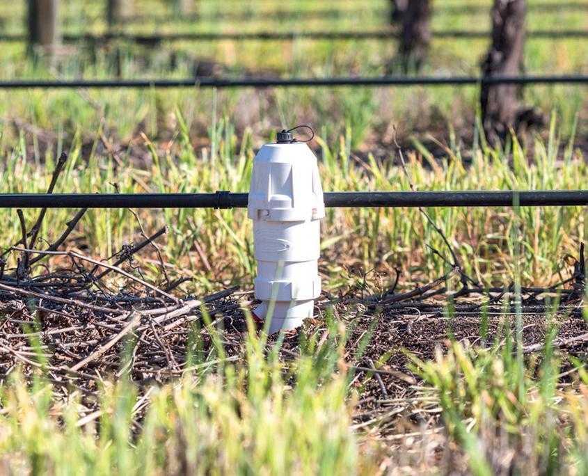 Ґрунтовий сенсор Sentek може зібрати і відправити дані не тільки по вологості, але і по мінералізації ґрунту
