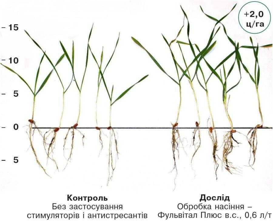 Приклад застосування в Донецькій області