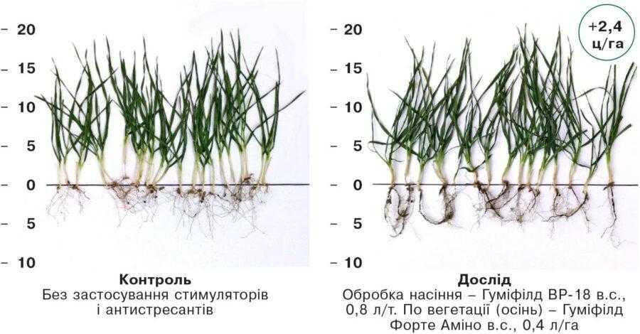 Приклад застосування в Кіровоградській області