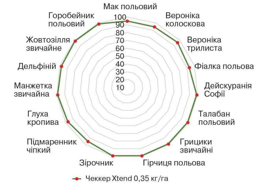 Ефективність гербіциду Чеккер® Xtend (Україна, 2015 р.), ВВСН 13