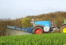 Особливості осіннього живлення та захисту пшениці