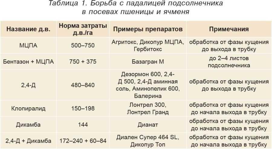 Таблица 1. Борьба с падалицей подсолнечника в посевах пшеницы и ячменя