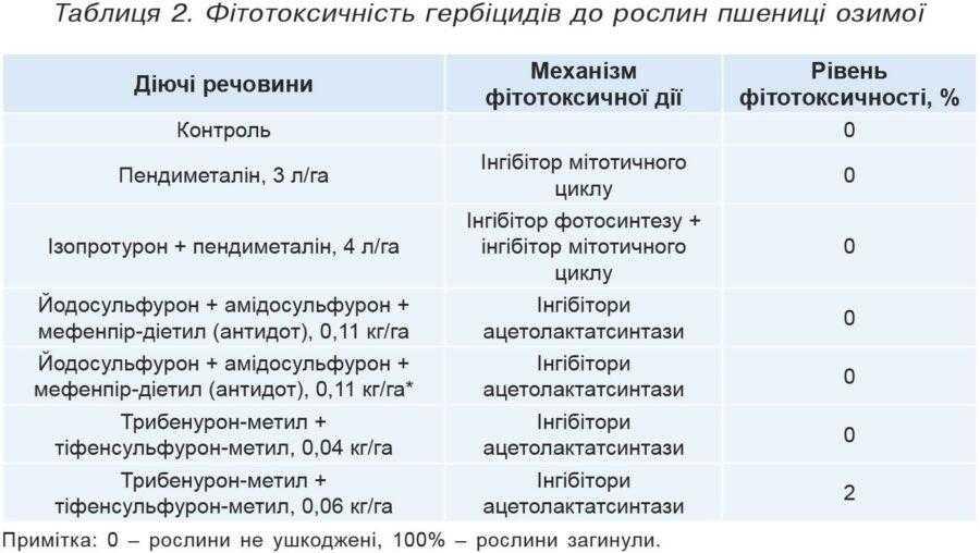 Таблиця 2. Фітотоксичність гербіцидів до рослин пшениці озимої