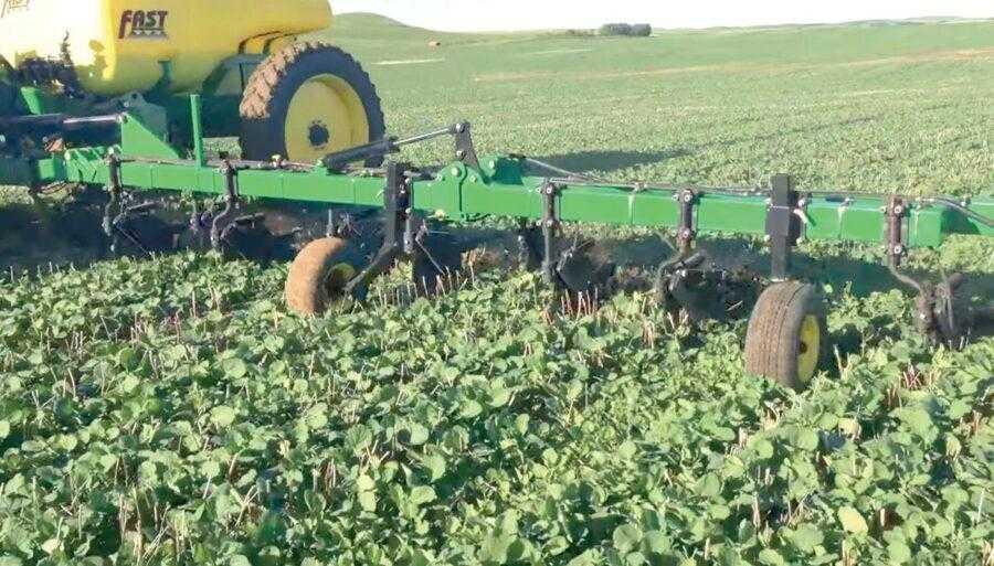 Внесення КАС у ґрунт (Side Dressing) в нормі 374 л/га на глибину 7,5 см. Стадія розвитку рослин ріпаку 6–7 листків. Міжряддя 30,5 см. Відстань між сошниками аплікатора 61 см. Ріпак посіяно за технологією No-till