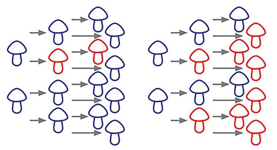 При ослабленні конкуренції з боку чутливих штамів резистентні форми отримують перевагу і стають домінуючою частиною популяції