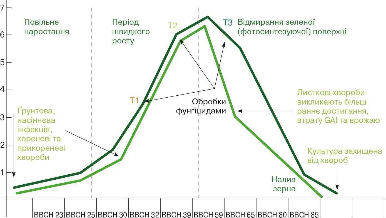 Рис. 5. Динаміка формування площі фотосинтетичної поверхні у посівах зернових культур