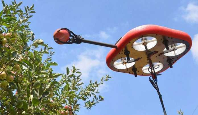 Tevel Aerobotics Technologies розробила літаючих роботів для збору фруктів (2)