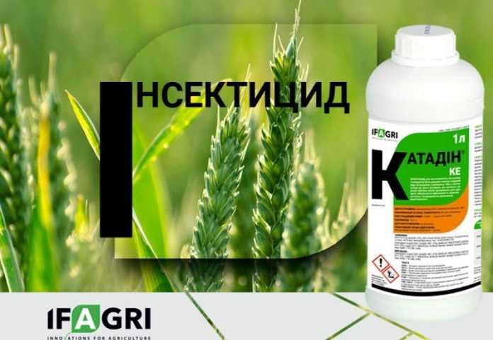 Компанія «Ерідон» презентує на українському ринку інноваційний інсектицид Катадін