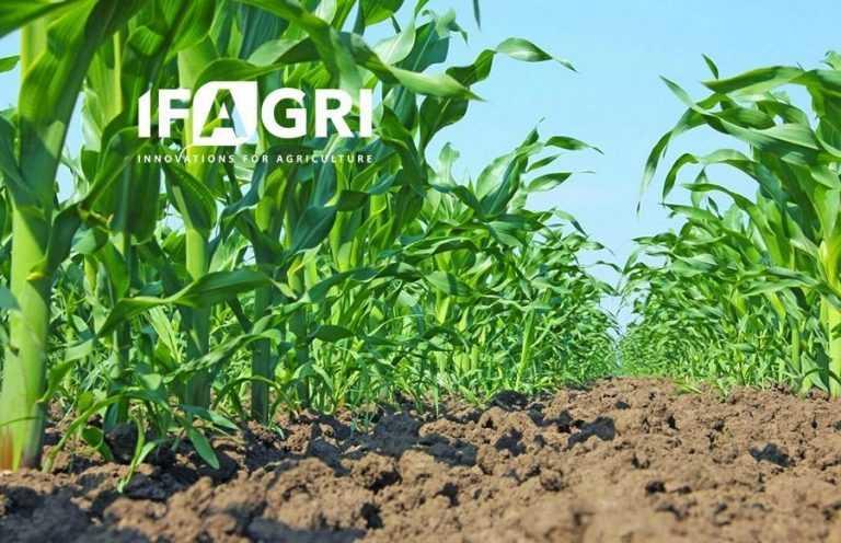 Новинка від «Ерідон». Біопрепарат «Майкросорч плюс кукурудза» для сухої інокуляції насіння кукурудзи
