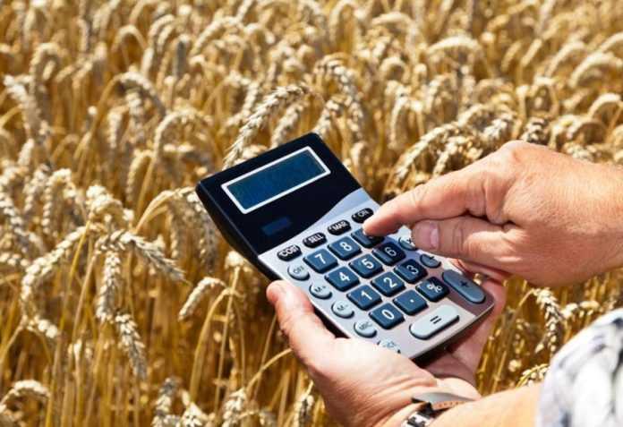 Raiffeisen Bank Aval запроваджує нову програму для клієнтів ALFA Smart Agro