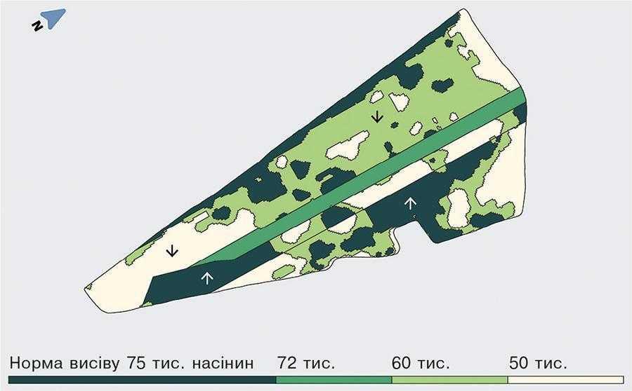 Карта-завдання поля Вікторія