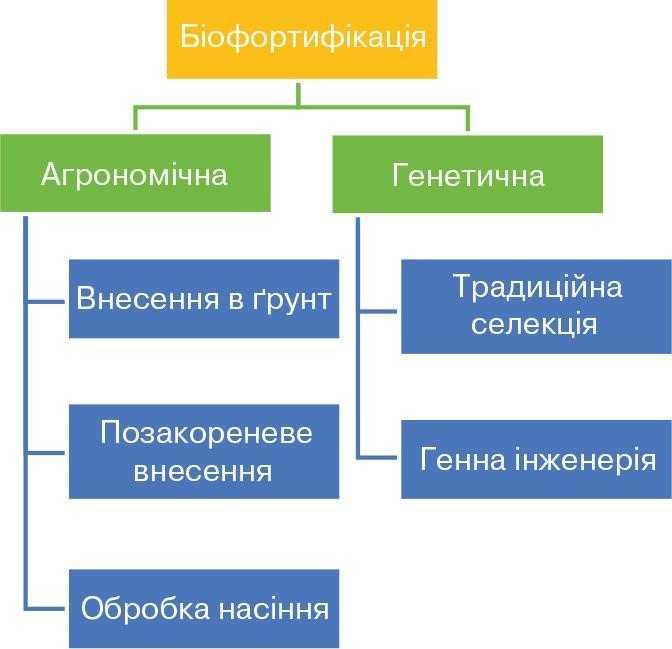 Рис.2. Способи біофортифікації