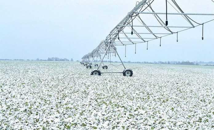 Особливості степового агробізнесу-1