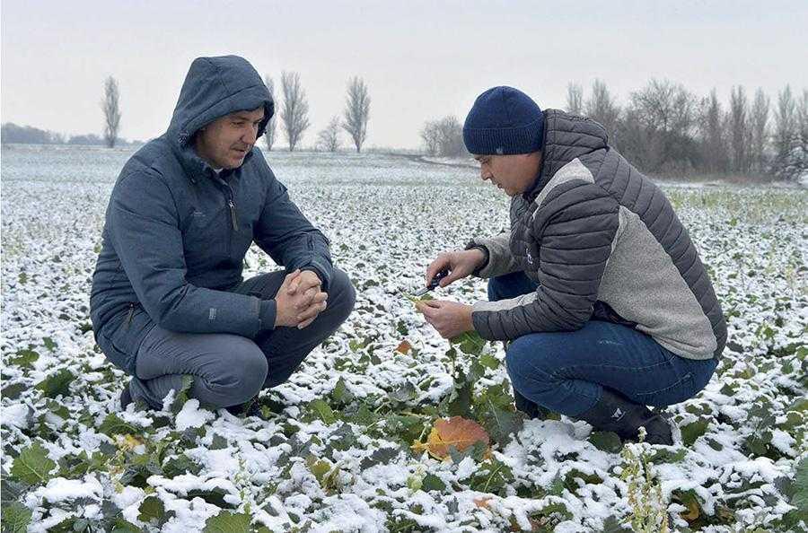 Особливості степового агробізнесу