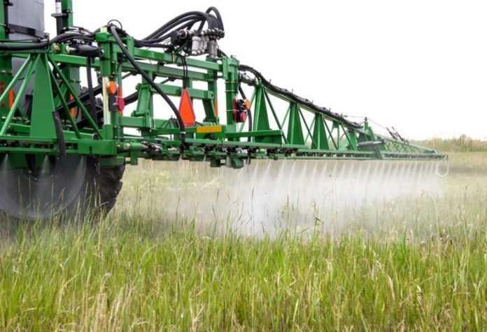 Як погода впливає на ефективність застосування гербіцидів