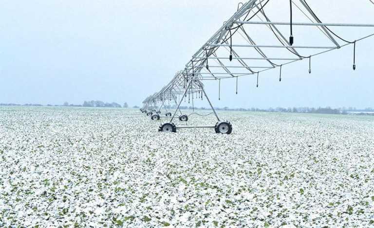 Як залишатись рентабельним в Степу. Особливості агробізнесу в ТОВ «Славутич»