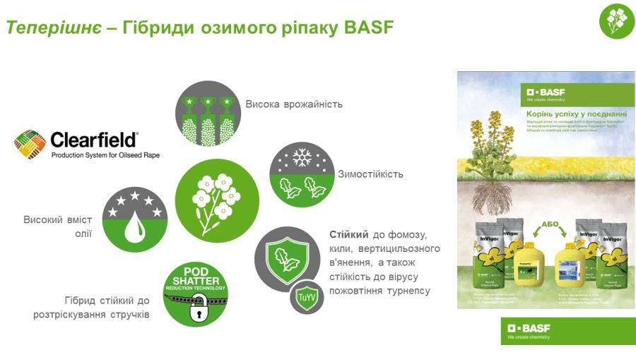 Експерти BASF - про насіннєвий портфель компанії