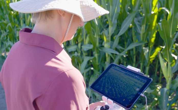 Технології та стратегії сталого розвитку: ключі до оптимізації аграрної галузі