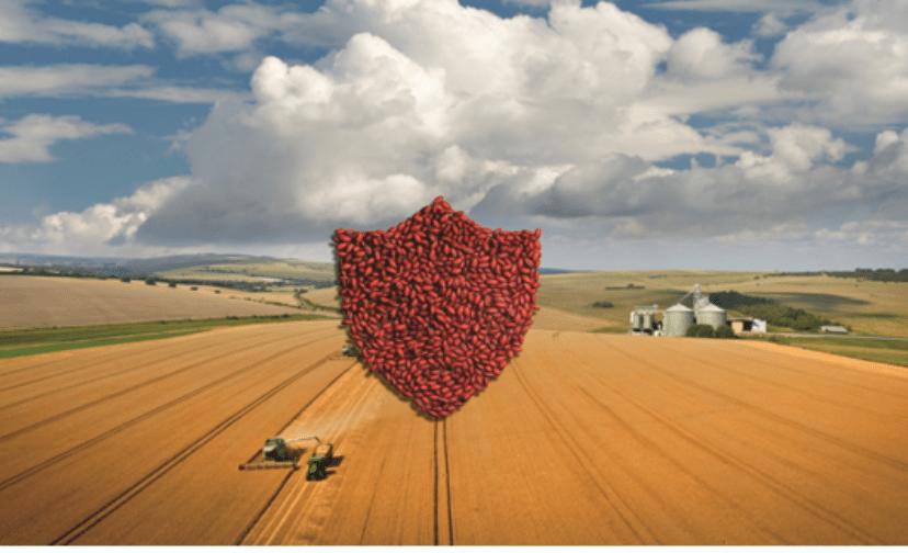 Як компанія BASF полегшує вибір аграріїв у захисті сільгоспкультур