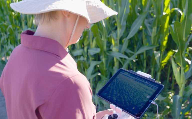 Технології та стратегії сталого розвитку рослинництва
