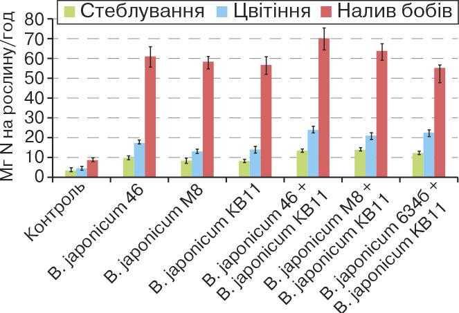 Активність симбіотичної азотфіксації заінокуляції сої штамами бульбочкових бактерій із різною швидкістю росту (польовий дослід, ICMAB НААН)