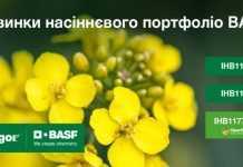 BASF виводить на ринок нові гібриди озимого ріпаку