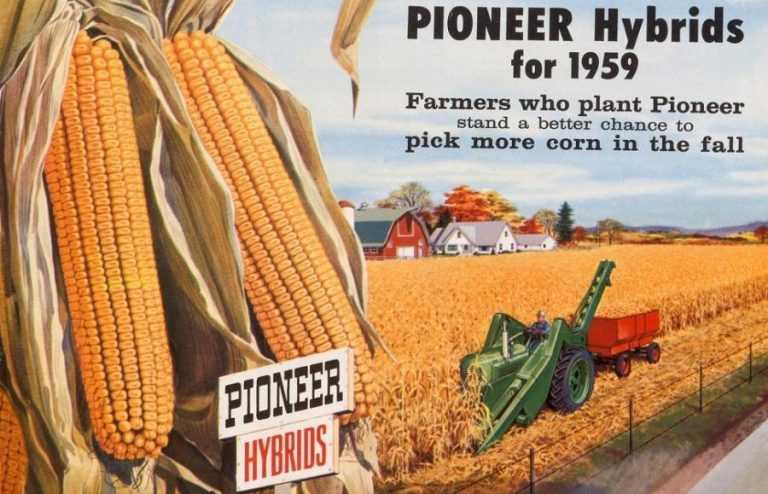 Бренд Pioneer® святкує 95 років лідерства в індустрії