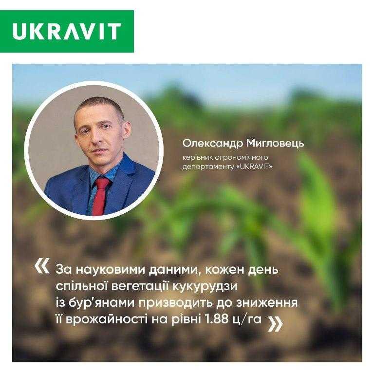 зниження врожайності