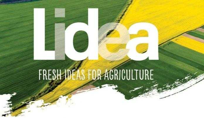 Lidea виводить на глобальний ринок комерційні бренди: Lidea та Caussade Semences Pro