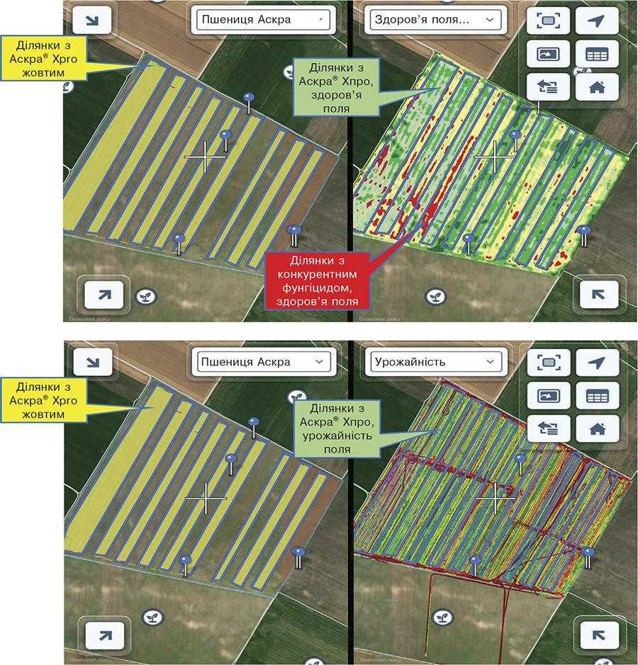 Скрін ділянок із цифрової платформи Climate FieldView™. Ділянки з використанням Аскра® Xpro та здоров'я поля (справа)