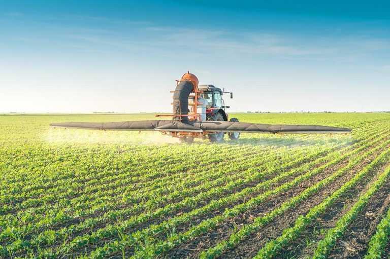 Вплив азотного живлення і гербіцидів на продуктивність сої
