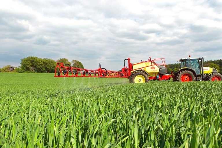 Вплив гумату калію на урожайність і якість зерна пшениці озимої
