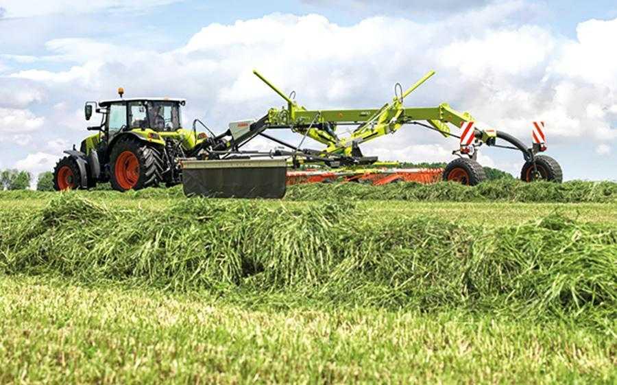 Рис. 6. Жито– одна з основних культур у світі для отримання силосу (сінажу). Для біогазового виробництва зазвичай використовують жито в чистому вигляді, для кормових цілей– як у чистому вигляді, так і у складі травосумішей