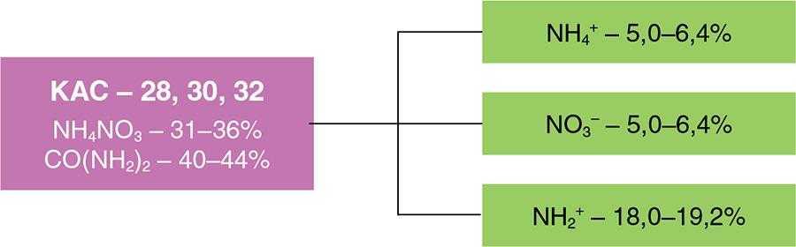Рис. 2. Вміст різних форм азоту в КАС