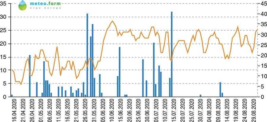Середньодобова температура та опади, квітень – серпень 2020 р., с. Могилівщина