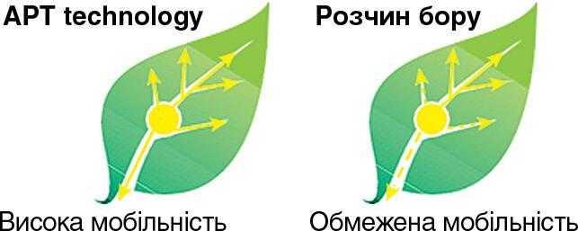Рис.3. Підвищення мобільності бору за рахунок додавання поліолів
